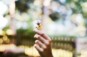 smoking-flowers